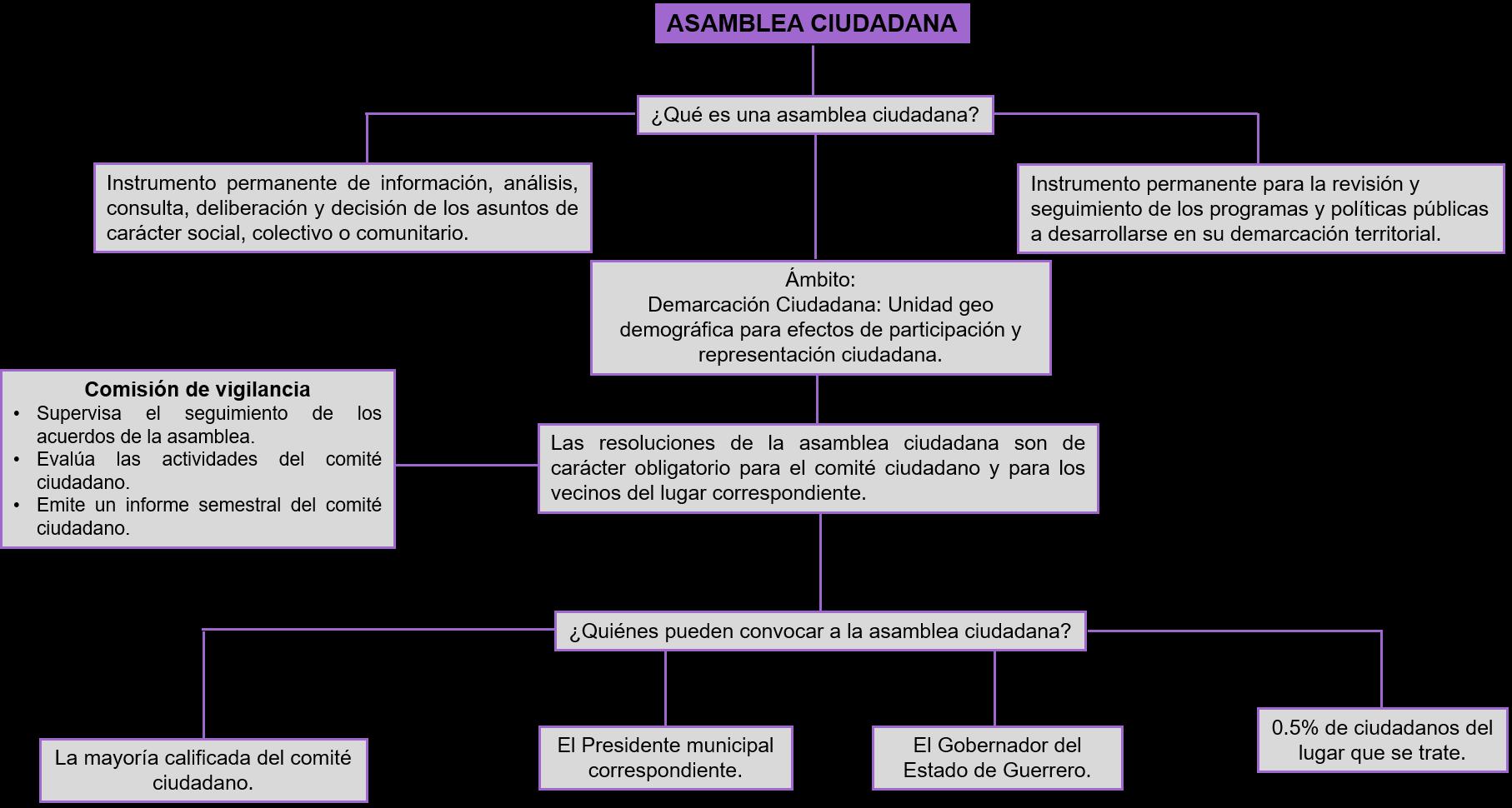 asamblea_ciudadana