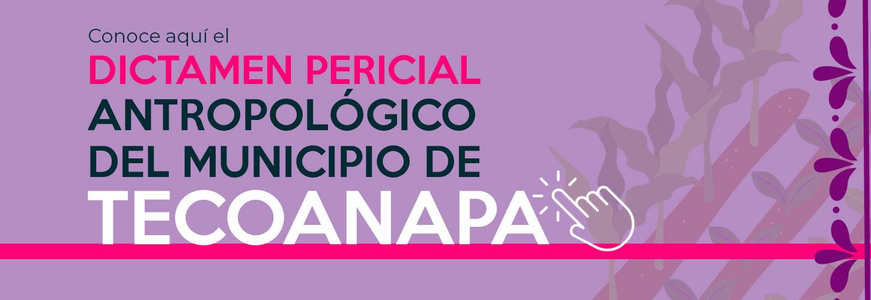 banner_dictamen_tecoanapa