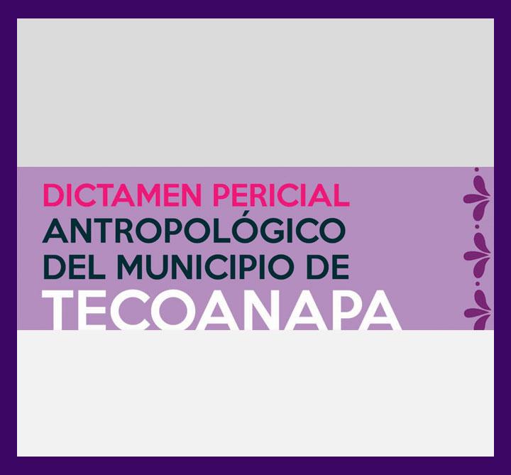 dictamen_tecoanapa